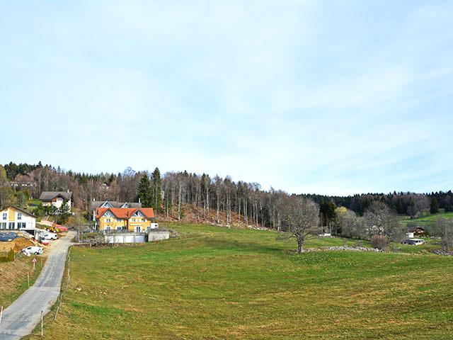Bien immobilier - St-Cergue - Villas
