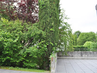 Agence immobili�re Morges - TissoT Immobilier : Villa individuelle 4.5 pi�ces