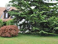 Lavigny - Villa individuelle 6.5 pi�ces