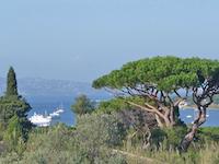 Agence immobilière Saint-Tropez - TissoT Immobilier : Villa individuelle 8 pièces