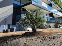 Achat Vente Cugnasco - Appartement 4.5 pièces
