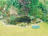 Duggingen - Splendide Villa 6.5 Zimmer - Verkauf - Immobilien