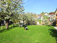 Blauen TissoT Immobilier : Villa individuelle 5.5 pièces