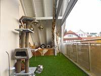 Agence immobilière Bellikon - TissoT Immobilier : Duplex 5.5 pièces