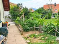 Aarburg - Splendide Maison 8.0 Zimmer - Verkauf - Immobilien