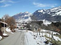 Agence immobilière Villars-sous-Mont - TissoT Immobilier : Villa individuelle 6.5 pièces