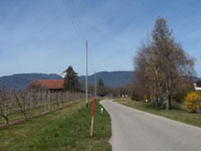 Borex Villa 5 Locali