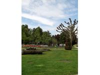 Bien immobilier - Vernier - Villa individuelle 7 pièces