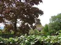 Vernier TissoT Immobilier : Villa individuelle 7 pièces