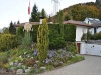 Achat Vente Blonay - Villa individuelle 4.5 pièces