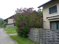 Vallorbe -             Detached House 4.5 Rooms