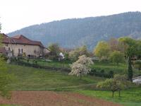 La Russille 1356 VD - Villa 5.5 pièces - TissoT Immobilier