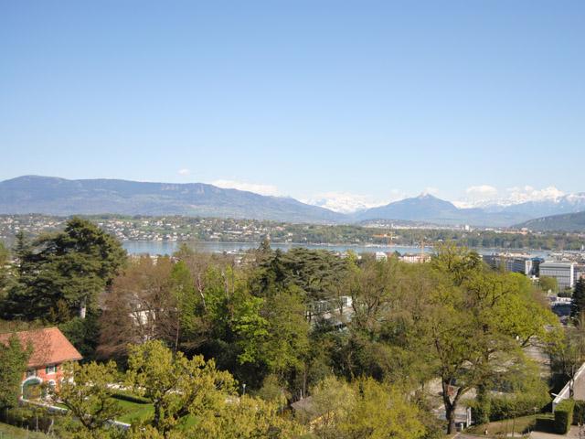 Genève Appartamento 5.0 Locali