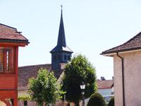 Vendre Acheter Crassier - Villa individuelle 7.5 pièces