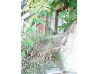 Bougy-Villars -             Villa individuale 12 locali