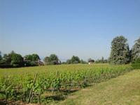 Agence immobilière Saint-Prex - TissoT Immobilier : Rez-jardin 4.5 pièces