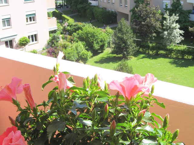 Onex - Appartement 6 Rooms - Sell buy TissoT real estate