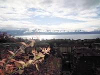 Achat Vente Lausanne - Appartement 4.5 pièces