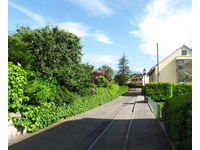 Achat Vente Bernex-Lully - Duplex 4.5 pièces