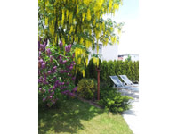 Bien immobilier - Bulle - Villa mitoyenne 5.5 pièces
