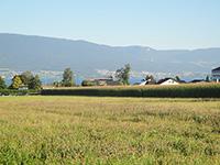 Agence immobilière Estavayer-le-Lac - TissoT Immobilier : Villa contiguë 4.5 pièces