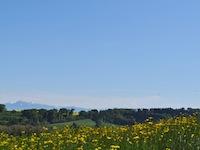 Vendre Acheter Lussery-Villars - Villa 6.5 pièces