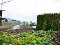Agence immobilière St-Légier-La-Chiésaz - TissoT Immobilier : Villa individuelle 5.5 pièces
