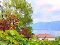 Flat 4.5 Rooms Montreux