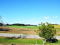 Chavannes-le-Chêne TissoT Immobilier : Ferme 8.0 pièces
