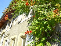 Penthéréaz - Splendide Maison villageoise 6.5 Zimmer - Verkauf - Immobilien