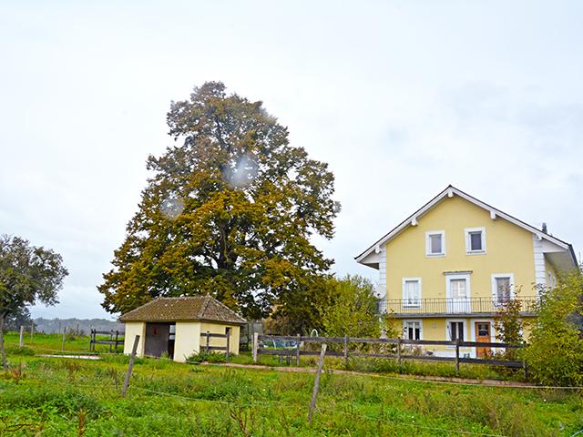 Villars-le-Terroir - Splendide Ferme 5.5 pièces - Vente immobilière