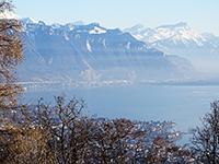 Le Mont-Pèlerin TissoT Immobilier : Appartement 5.5 pièces