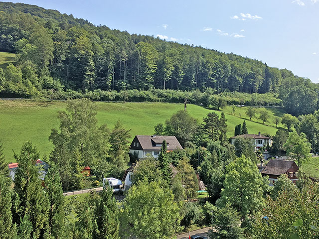 Waldenburg - Villa mitoyenne 6.0 Rooms - Sell buy TissoT real estate