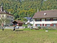 région - Bioley-Magnoux - Maison villageoise - TissoT Immobilier