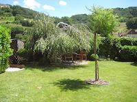 Villa individuale 6.5 Locali Cheyres