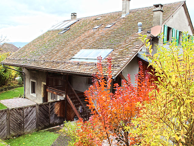 Daillens - Ferme 11.0 Rooms - Sell buy TissoT real estate