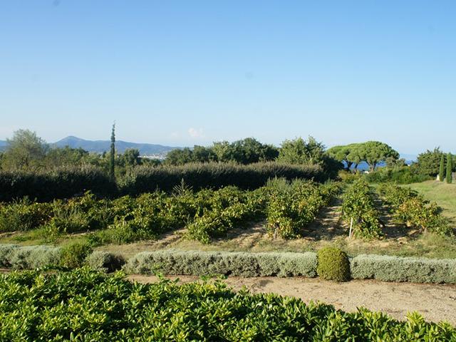 St-Tropez 83990 PROVENCE-ALPES-COTE D'AZUR - Villa 7.0 pièces - TissoT Immobilier