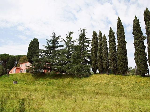 Fauglia -  Villa - Immobilienverkauf - Italien - Lux-Homes TissoT