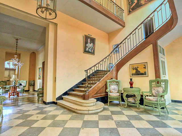 Beaumont-de-Lomagne TissoT Immobilier : Hôtel particulier 14.0 pièces