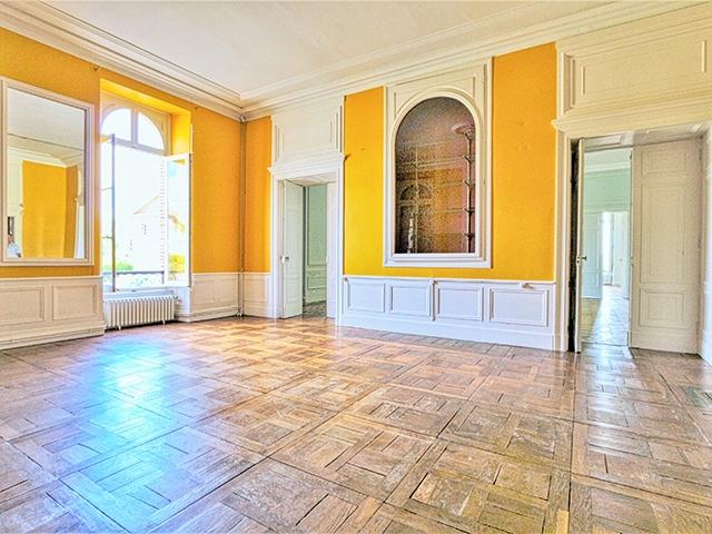 Montauban 82000 LANGUEDOC-ROUSSILLON-MIDI-PYRENEES - Château 25.0 pièces - TissoT Immobilier