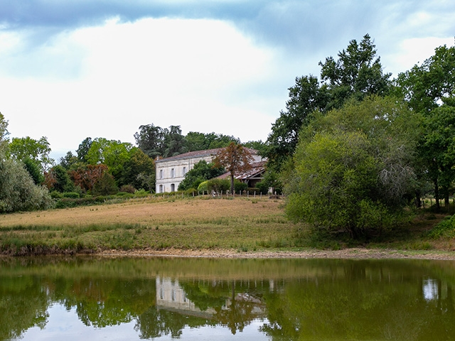 Bien immobilier - Saint-Martin-de-Laye - Maison 10.0 pièces