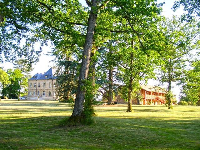 Nogaro 32110 LANGUEDOC-ROUSSILLON-MIDI-PYRENEES - Château 21.0 pièces - TissoT Immobilier
