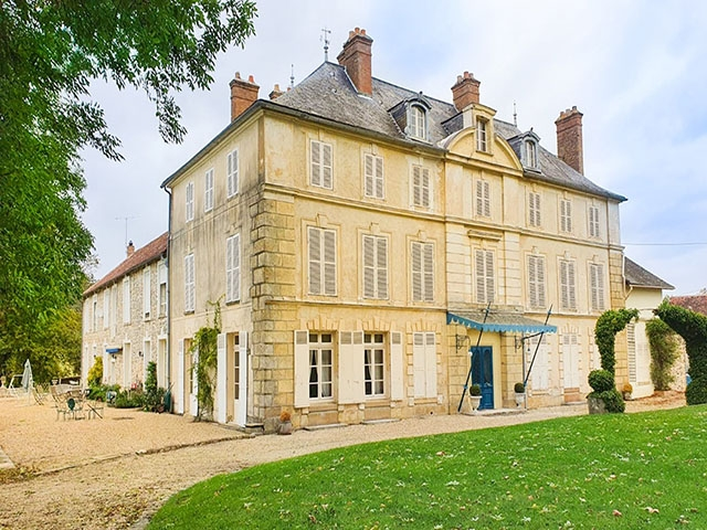 Fontainebleau - Schloss 15.0 rooms - international real estate sales
