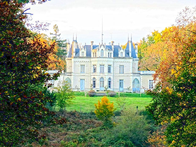 Bien immobilier - Bossay-sur-Claise - Château 15.0 pièces