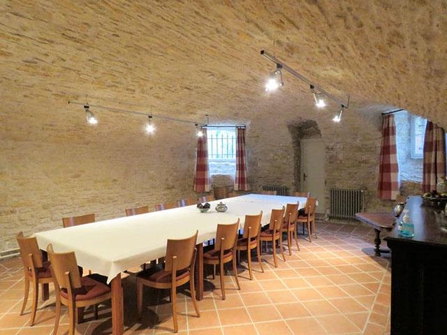 Baugy TissoT Immobilier : Château 29.0 pièces