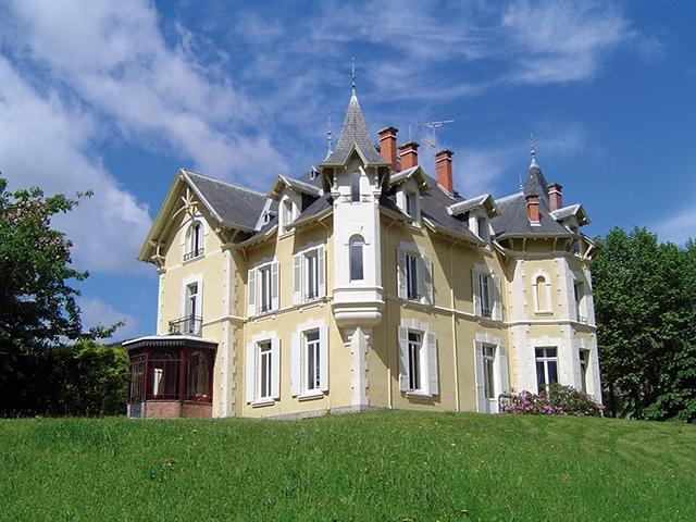 Bien immobilier - Saint-Julien-Molin-Molette - Château 19.0 pièces