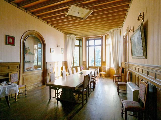 Saint-Julien-Molin-Molette 42220 AUVERGNE-RHONE-ALPES - Château 19.0 pièces - TissoT Immobilier