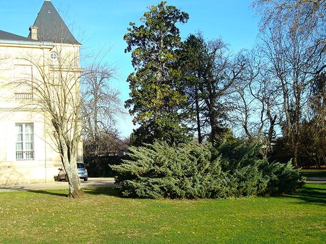 Bien immobilier - Léognan - Château 15.0 pièces