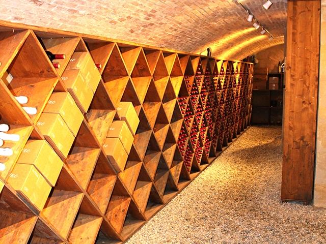 Léognan TissoT Immobilier : Château 15.0 pièces