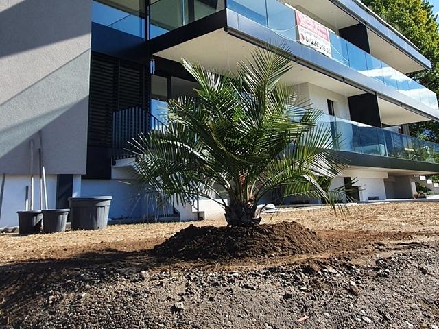 Cugnasco TissoT Realestate : Appartement 4.5 rooms
